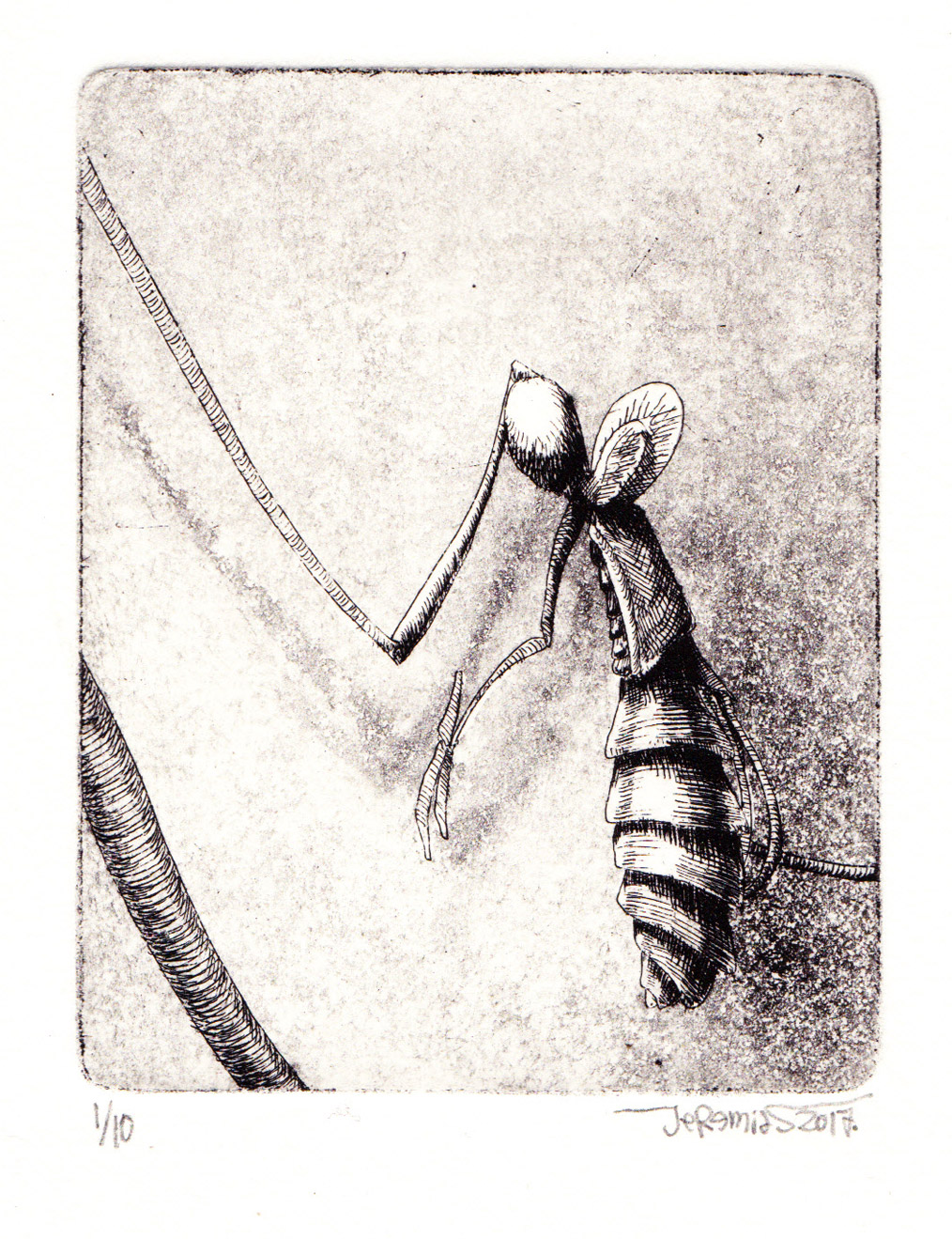 Larva; 7,5 x 9,5 cm; etching and aquatint; 2017